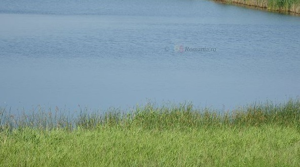 Lacul Corod pescuit|365romania.ro