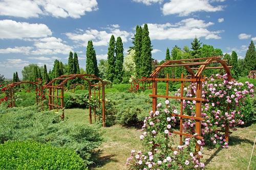 Gradina Botanica Anastasie Fatu din Iasi | 365romania.ro
