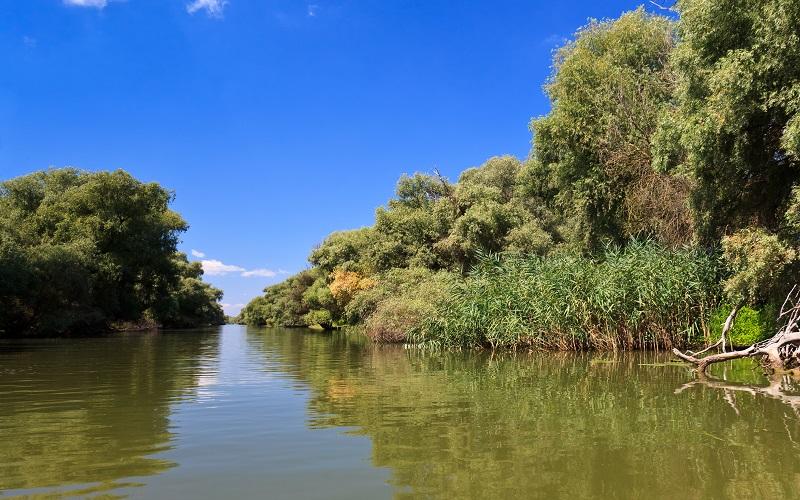 Parcul Natural Balta Mica a Brailei | 365romania.ro