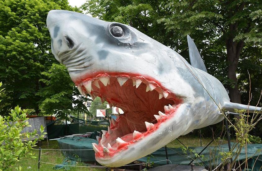 Natura Dino Park parc tematic dinozauri|365romania.ro