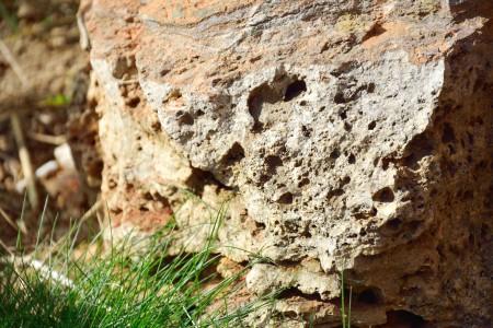 Rezervatia naturala Piatra Closanilor jud. Gorj atractii turistice| 365romania.ro