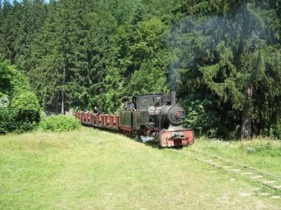 Plimbarea cu mocanita din Covasna|365romania.ro