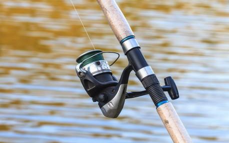 Monster Carp Lake pescuit crap|365romania.ro