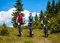 Traseu bicicleta Tara Lapusului|365romania.ro
