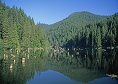 Lacul Rosu atractii turistice Harghita | 365romania.ro