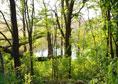 Rezervatia naturala de la Reci|365romania.ro