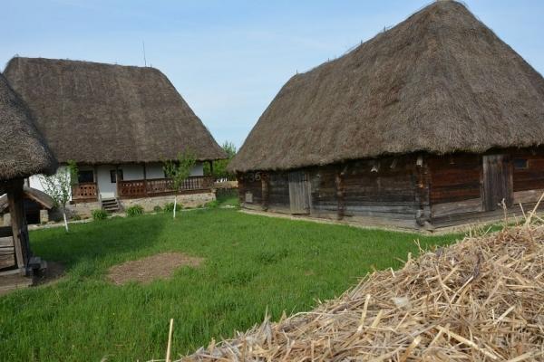 Muzeul Golesti 365 romania ADI_8952.jpg